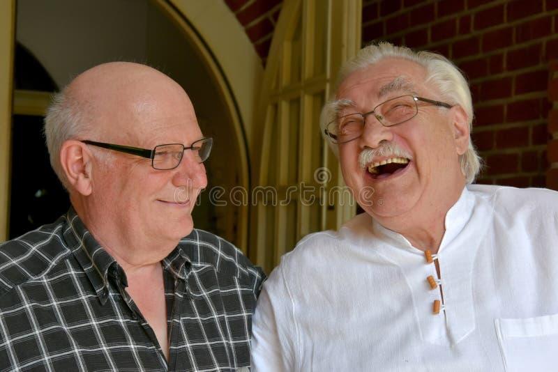Amigos, riendo con todo su corazón foto de archivo