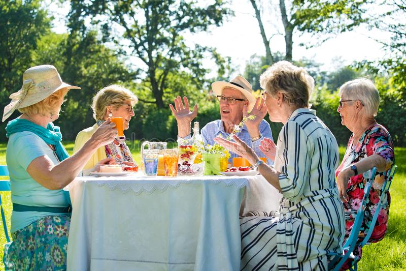 Amigos superiores que têm o picnick com ar livre do café e do bolo na luz do sol foto de stock royalty free