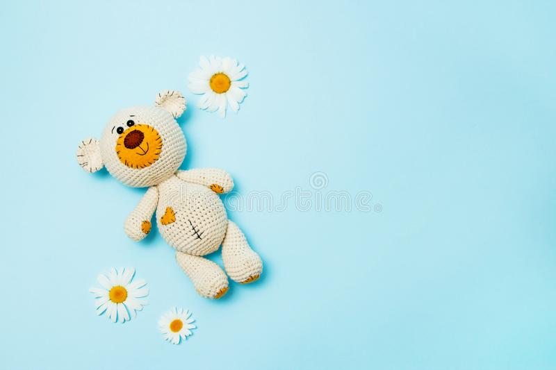 Amigurumi handmade teddy bear with daisies isolated on a blue background. Baby background. Copy space, top view stock image