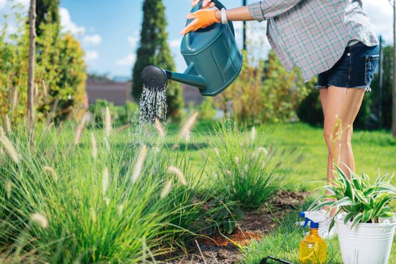 Amincissez le jardinier tenant l'arroseuse de jardin tout en se tenant près du lit gentil de jardin photographie stock