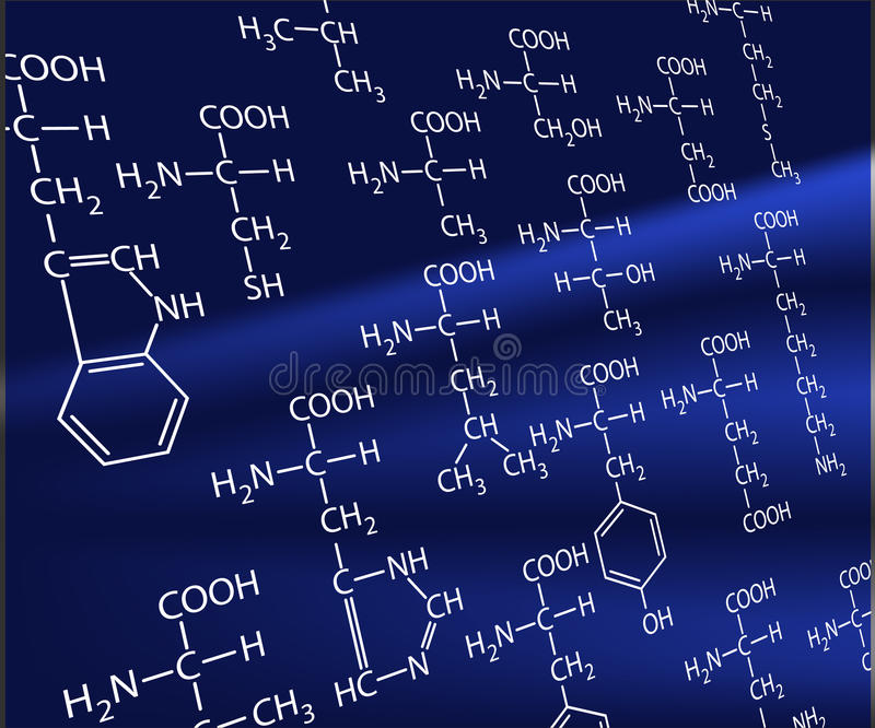 Aminoácidos stock de ilustración