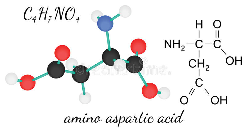 Aminosyramolekyl för aspartic syra C4H7NO4 stock illustrationer