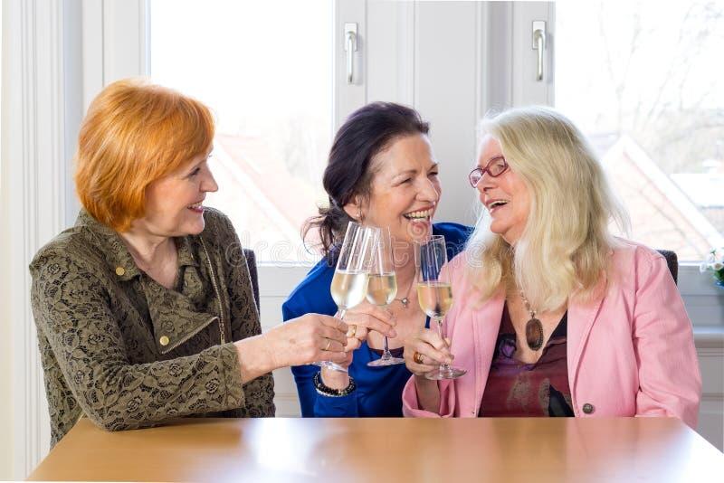 Amis heureux de maman appréciant des verres de vin image stock
