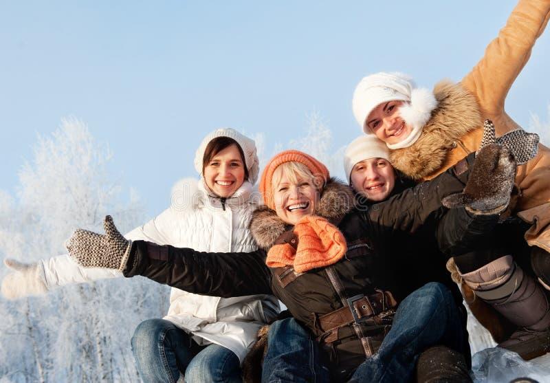 Amis heureux sur un fond de l'hiver image libre de droits