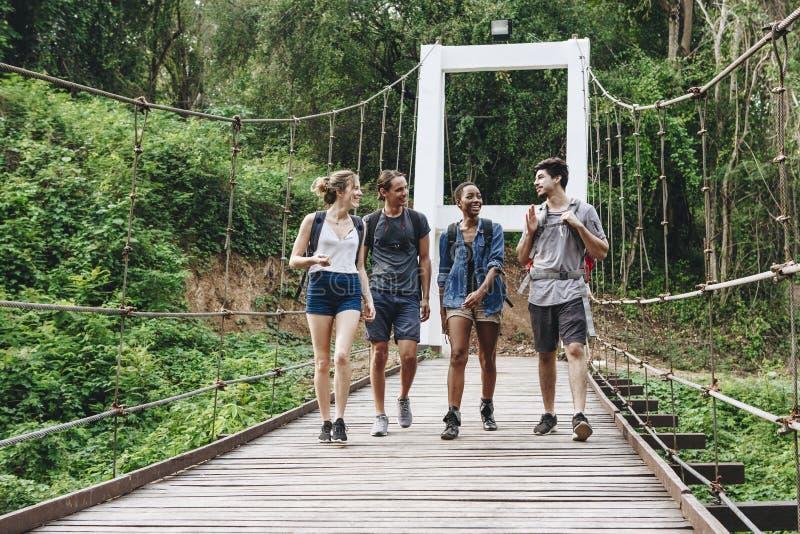 Amis marchant sur un pont en nature image stock