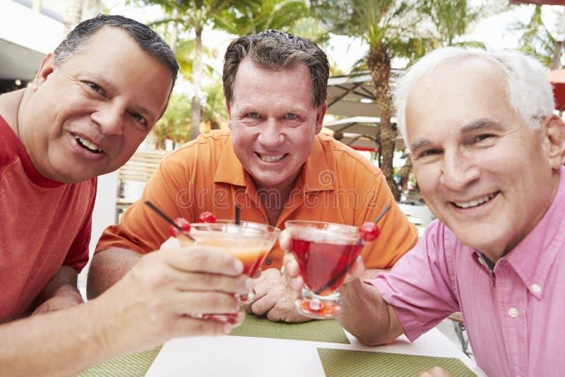 Amis masculins supérieurs appréciant des cocktails dans la barre ensemble image stock