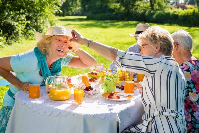 Amis pluss âgé ayant le pique-nique en nature luxuriante ensoleillée photo stock