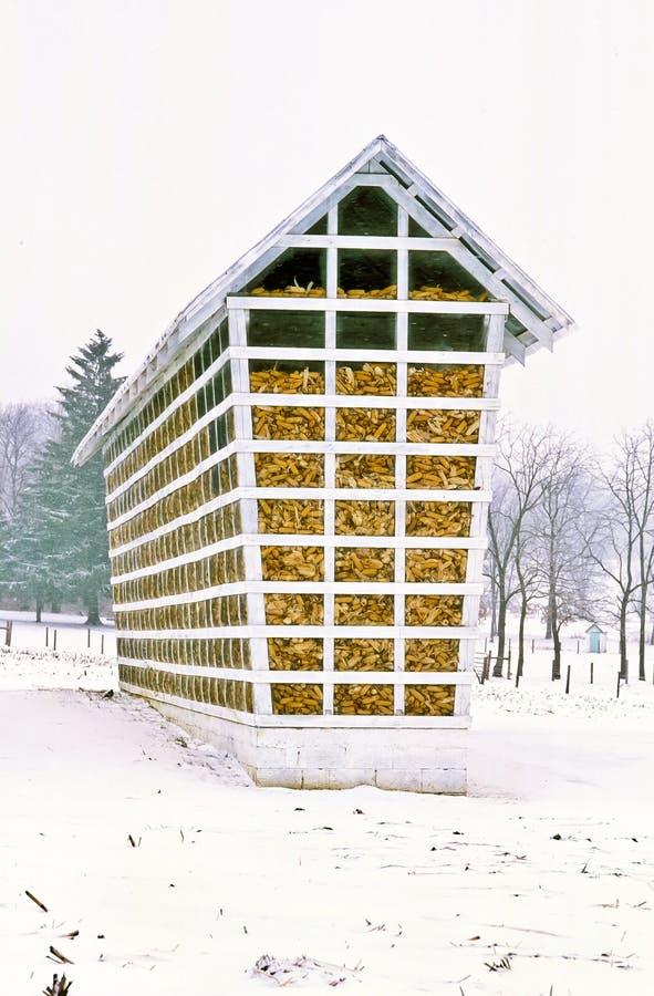 Amische Maiskrippe füllte an einem schneebedeckten Tag stockbild