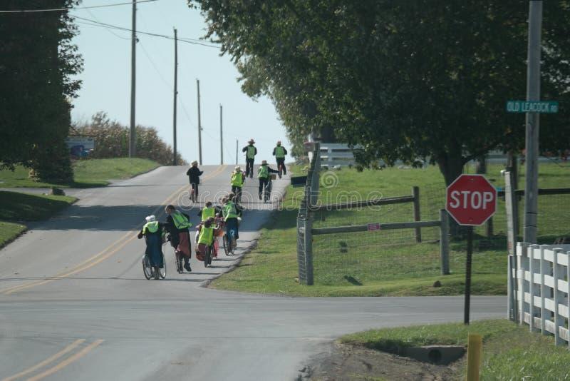 Amische Studenten, die nach Hause von der Schule gehen lizenzfreie stockfotografie