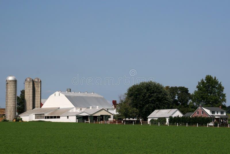 Amischer Bauernhof lizenzfreie stockfotografie