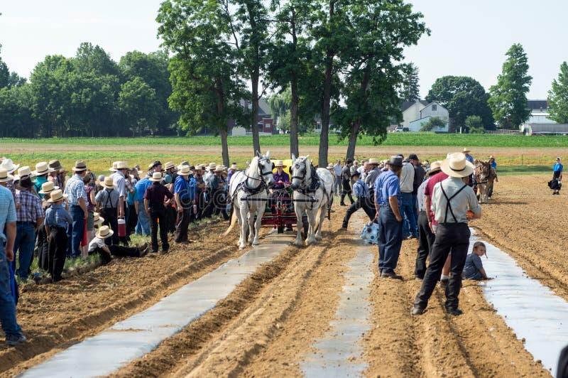 Amish Śródpolnej pracy demonstracja obraz stock