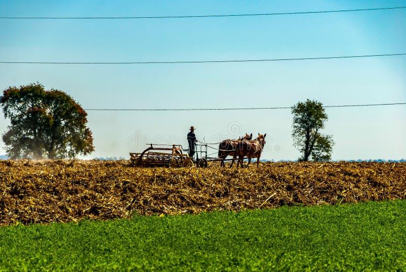 Amish bonde Plowing fälten royaltyfri fotografi