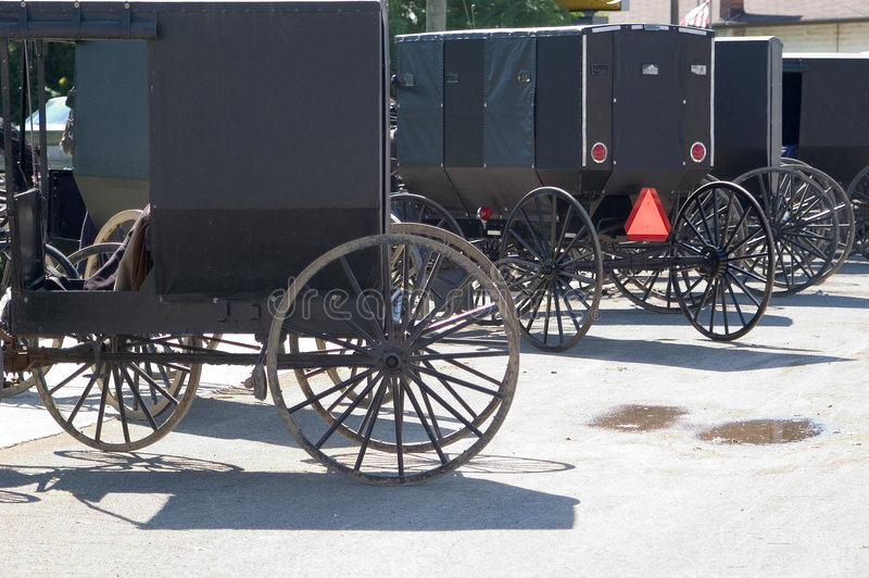 Download Amish Buggies stock photo. Image of wagon, vehicle, travel - 8840
