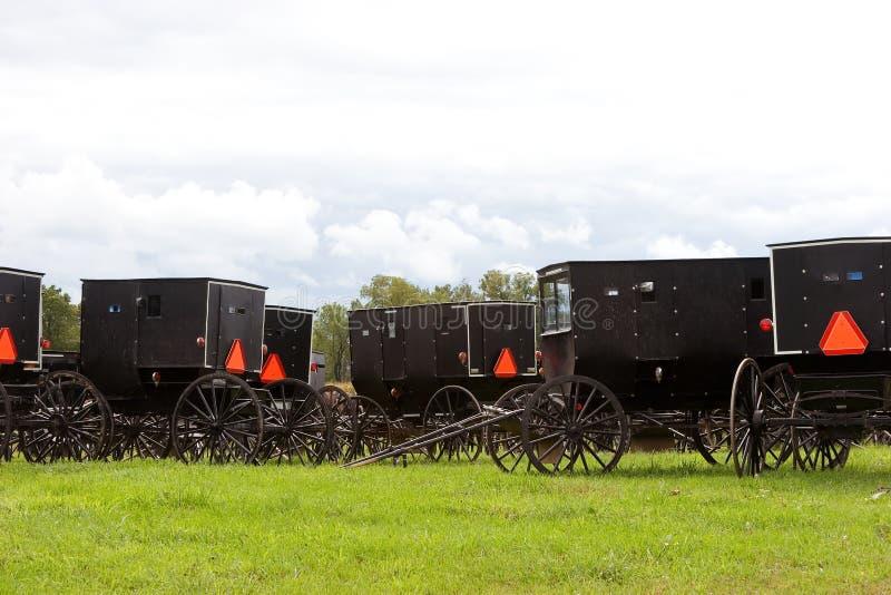 Amish buggies 3 stock afbeeldingen