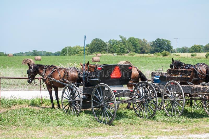 Amish Buggies royalty-vrije stock foto's