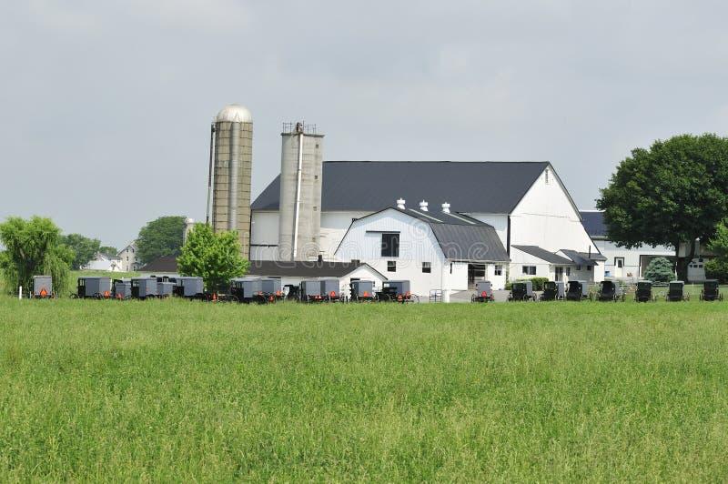Amish Buggies Gathering Royalty Free Stock Image