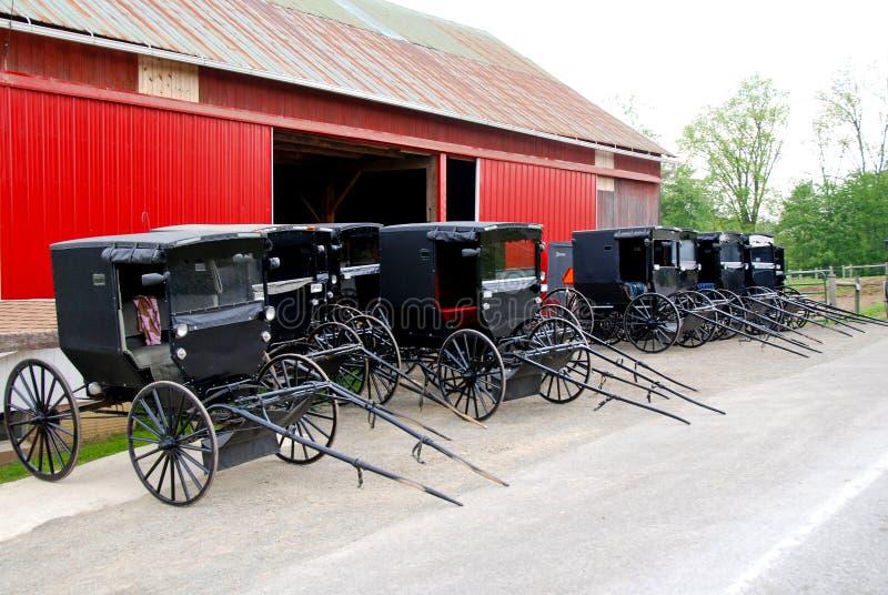 Amish buggies royalty free stock photos