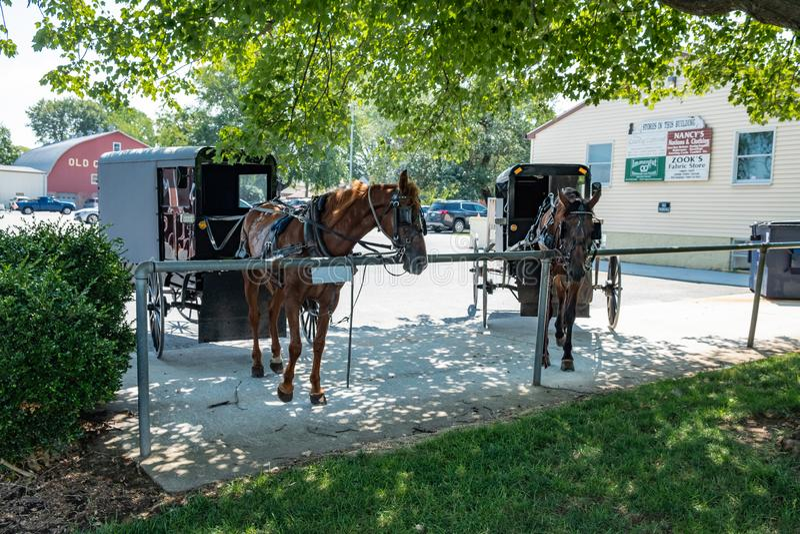 Amish Buggy, Lancaster County, Pennsylvania. An amish buggy and horse in Lancaster County, Pennsylvania stock photo