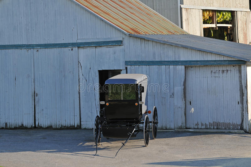 Amish buggy. Parked in front of Tobacco barn in Lancaster Pennsylvania countryside royalty free stock photo