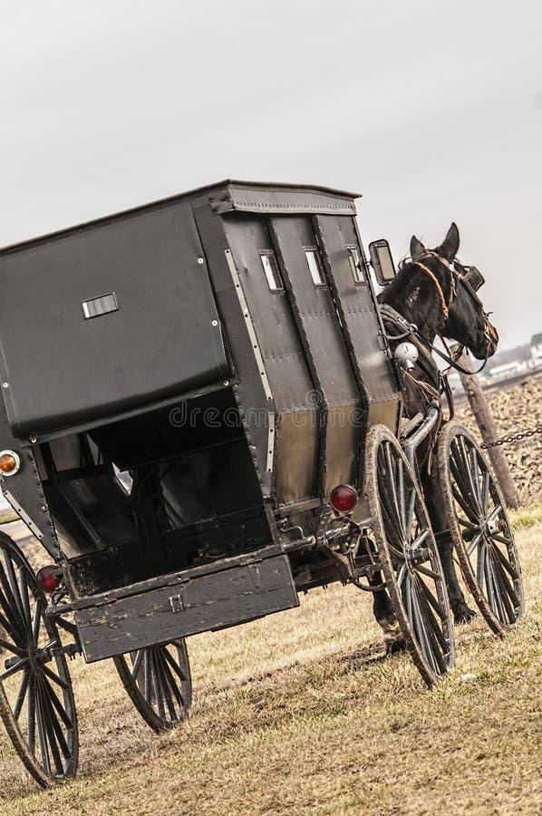 Amish, caixão, carrinho fotos de stock royalty free