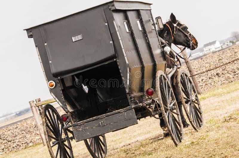 Amish,casket,buggy royalty free stock photo