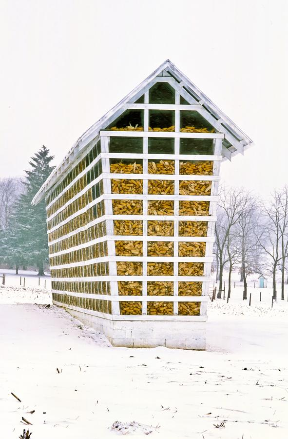 Amish corn crib filled on a snowy day. Amish corn crib filled with dried corn on a cold, snowy day in Lancaster, Pennsylvania stock image