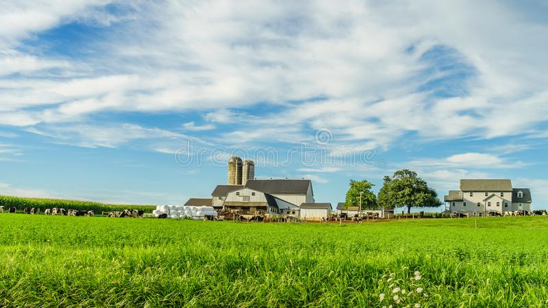 Amish country farm barn field agriculture in Lancaster, PA. Amish country farm barn field agriculture in Lancaster PA US royalty free stock images