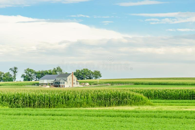 Amish country farm barn field agriculture in Lancaster, PA. Amish country farm barn field agriculture in Lancaster PA US stock images