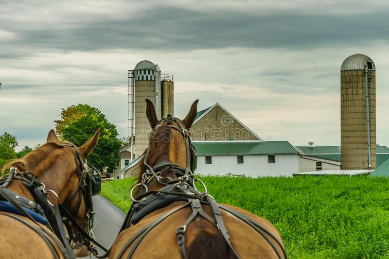 Amish country farm field agriculture and hoses in Lancaster, PA. US stock photos