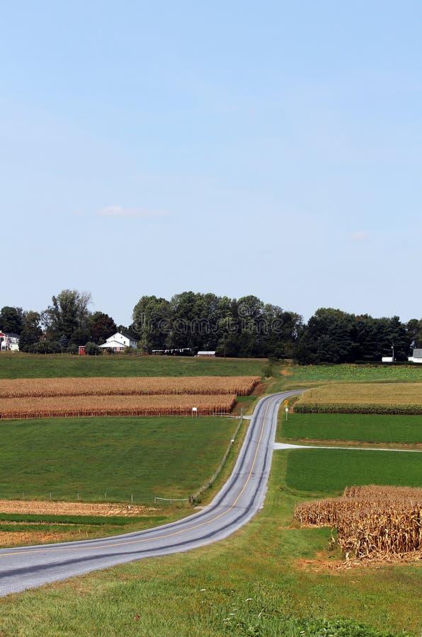 Amish Country Farm Landscape