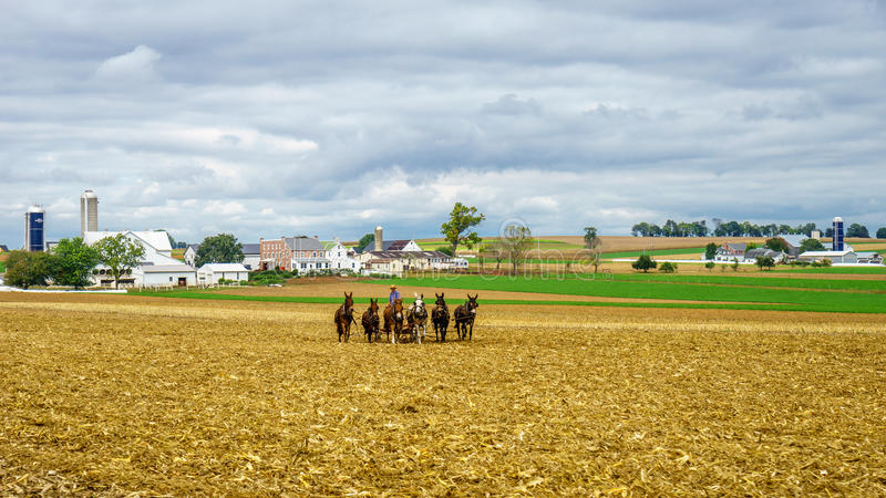 Amish country, PA. Amish country horse farm barn field agriculture in Lancaster, PA royalty free stock photography
