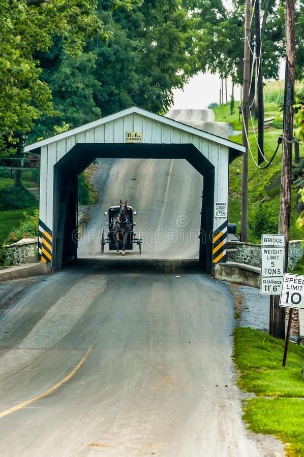 Amish Covered Bridge Buggy Going Through It. On a Summer Day royalty free stock photo