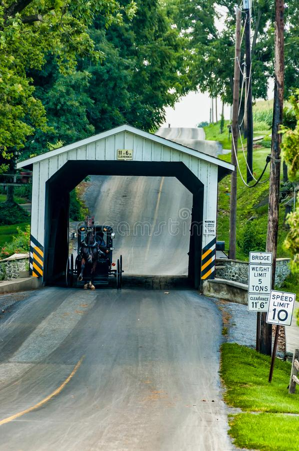 Amish Covered Bridge Buggy Going Through It. On a Summer Day royalty free stock images