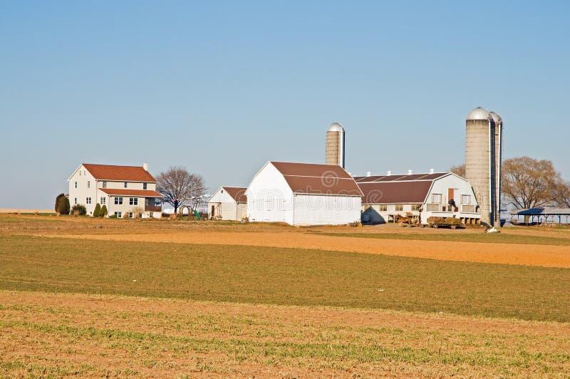 Download Amish farm barns and silo stock photo. Image of barns - 7616410