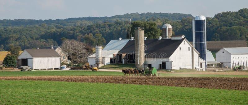 Amish farm royalty free stock photography