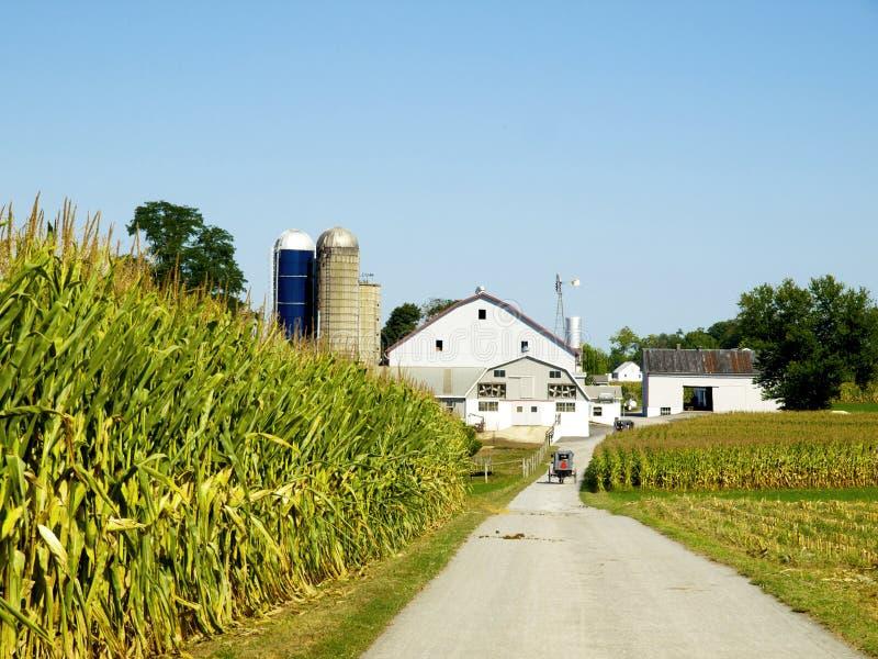 Amish Farm, Lancaster USA stock photos