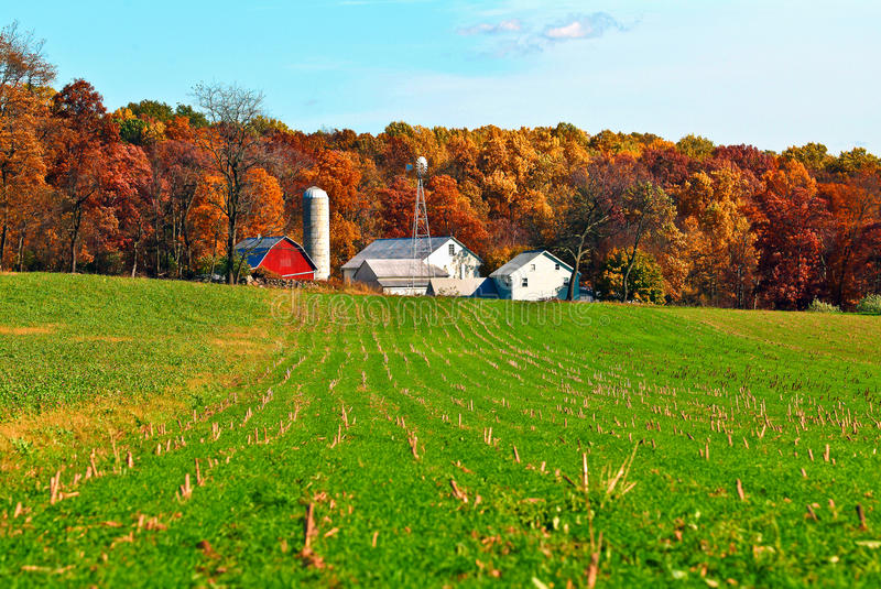 Amish Farm and Silos. With cut corn field and woods in the fall in Lancaster County, Pennsylvania stock image