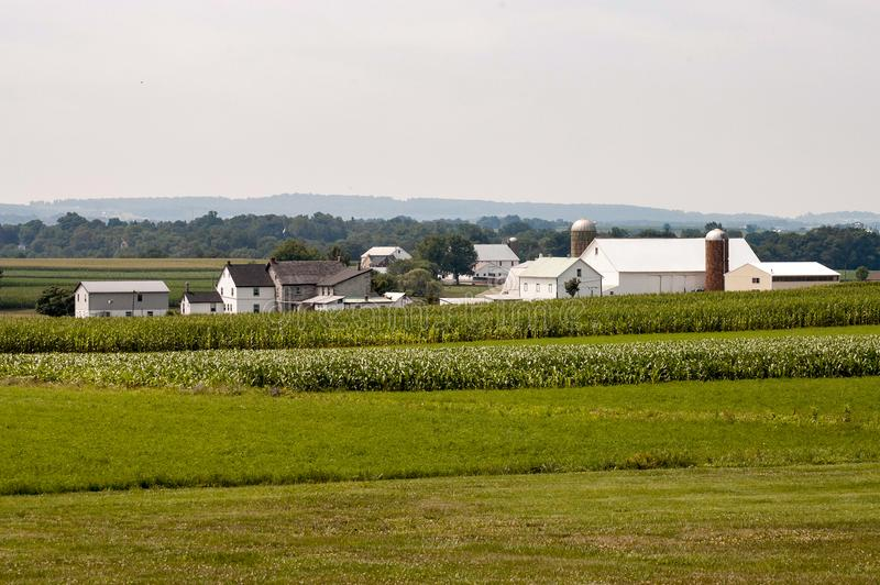 Amish Farm on Sunny Day 3. Amish Farm on Sunny Day on Cloudless Day 3 royalty free stock image