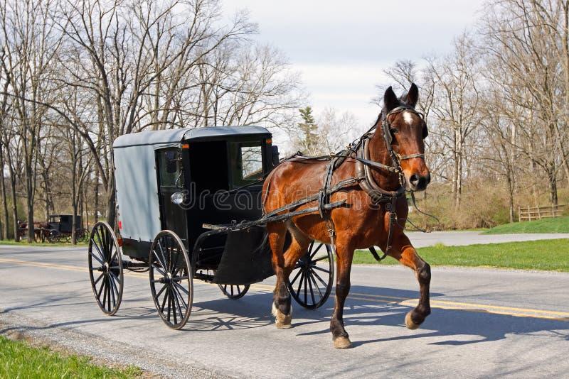 Amish fracht i koń obrazy stock