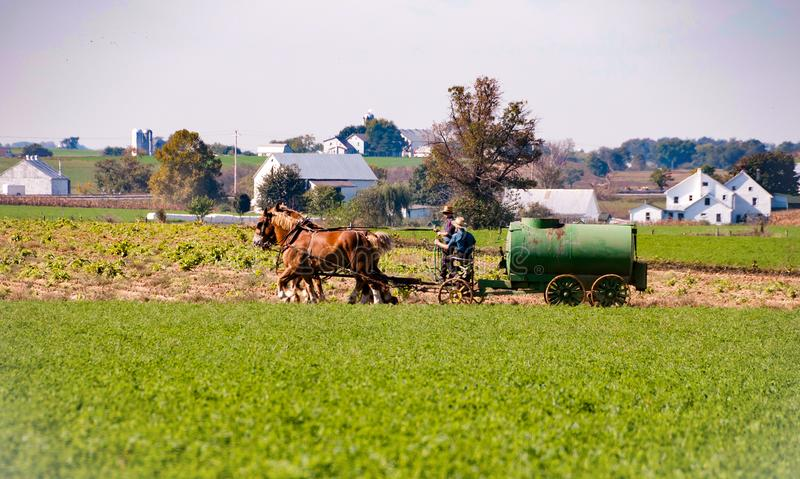 Amish gospodarstwa rolnego syna & ojca działanie obraz stock