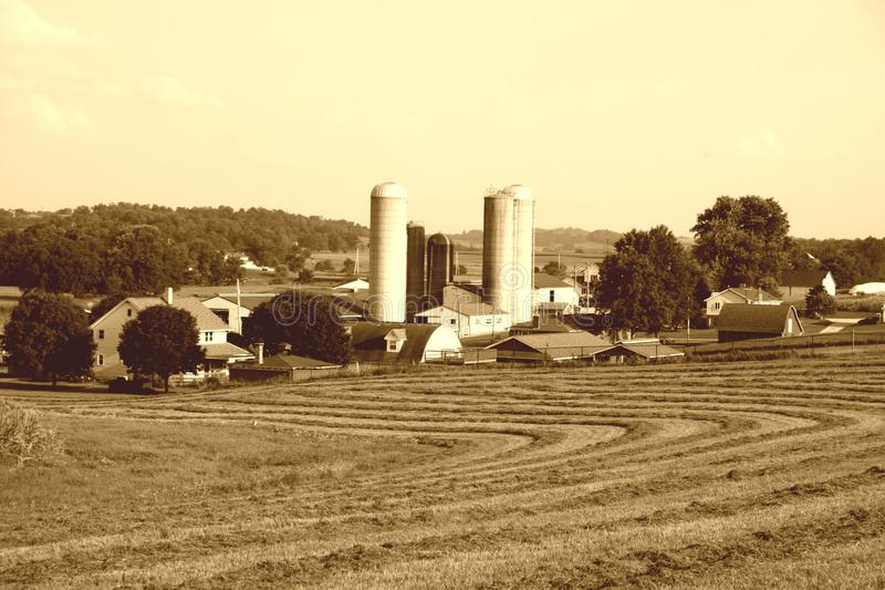 amish gospodarstwo rolne obrazy royalty free