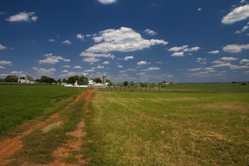 amish gospodarstwo rolne obraz royalty free