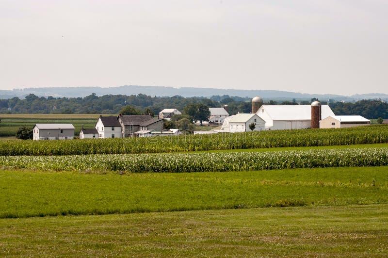 Amish gospodarstwo rolne na słonecznym dniu 3 obraz royalty free
