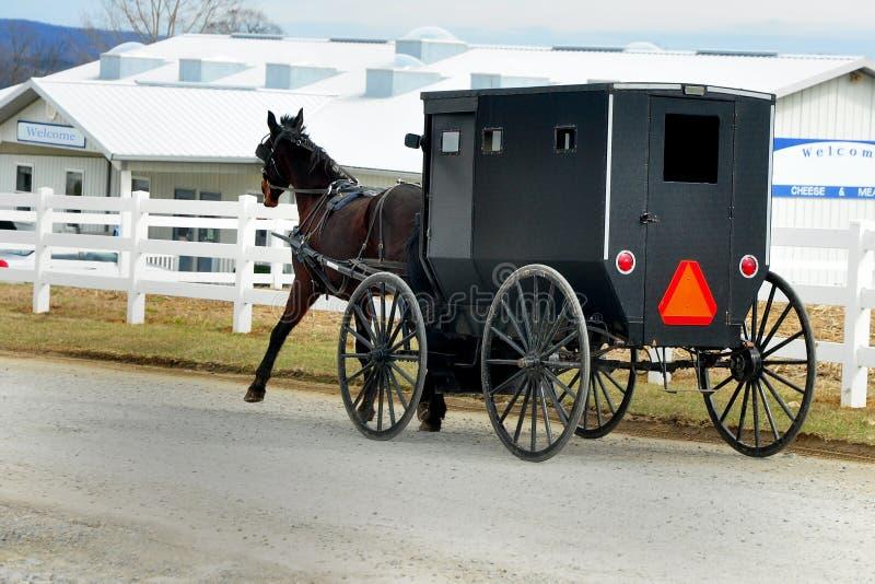 Amish häst och barnvagn som går till ett lokalt Amish lager arkivbilder