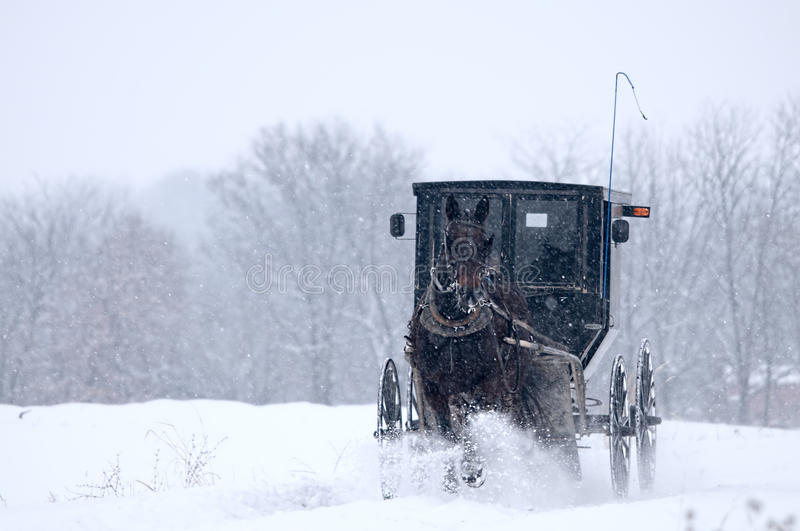 Amish horse and buggy,snow,storm. Amish horse and buggy on way to Sunday church during a Missouri winter snow storm royalty free stock image