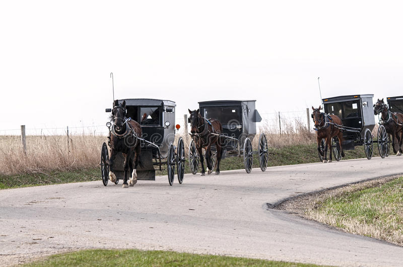 Amish horse and buggys stock images
