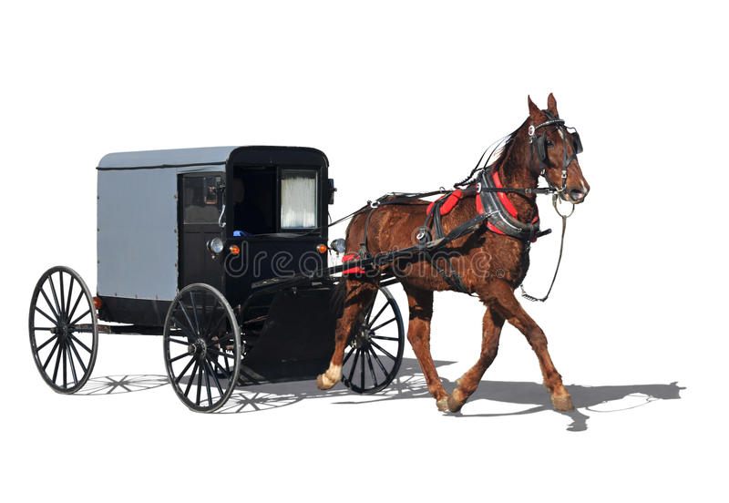 Amish horse-drawn carriage. Also know as buggy isolated in white royalty free stock images