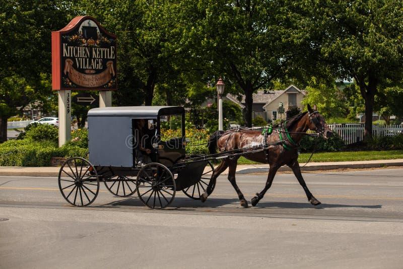 Amish Koński powozik w lecie obraz stock