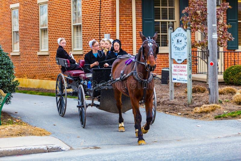 Amish kobiety Jedzie w Wysokim furgonie w stosunek wiosce zdjęcia royalty free
