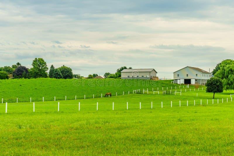 Amish kraju gospodarstwa rolnego stajni pola rolnictwo w Lancaster, PA obraz stock